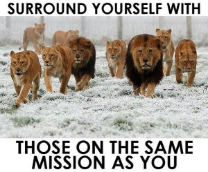 Lions_Image_Quote